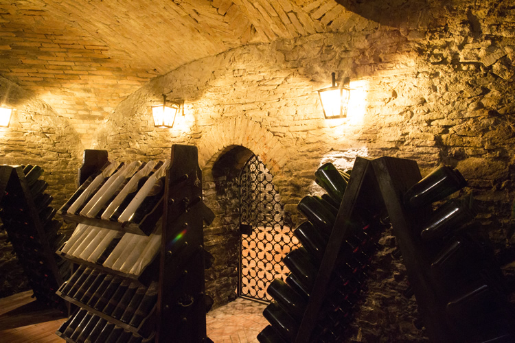 Take advantage of a guided tasting in the magical underground cellars.